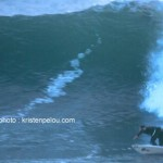 photos-dan-surf-002